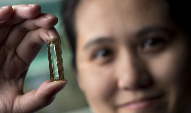 UC_Irvine_Nanowire_Battery