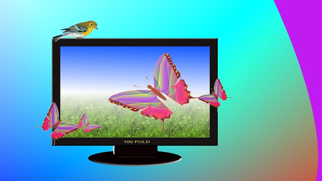 3D_Television_Butterflies