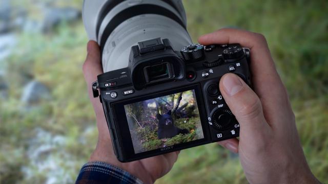 Sony_Alpha_a7R_III_Camera